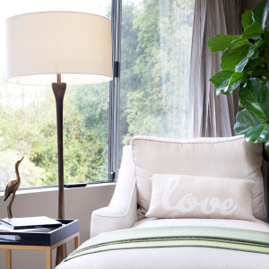 chase with pillow that says love infront of a beautiful window with a fiddle leaf fig plant and brass floor lamp design by sara bates interior design